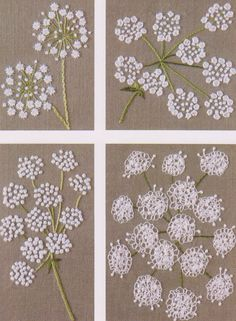 Queen Anne's Lace flowers embroidery