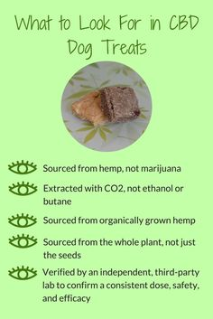 Our products are sourced from the entire organic hemp plant, extracted by and third party lab tested to bring you the best CBD treats for your animal! Dog Treat Recipes, Dog Food Recipes, Oils For Dogs, Cbd Hemp Oil, Dog Cookies, Pet Treats, Homemade Dog, Pet Health, Health Care