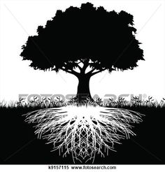 arbre, racines, silhouette Voir Illustration Grand Format