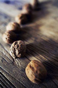 valscrapbook:  Walnuts by Shelba on Flickr.