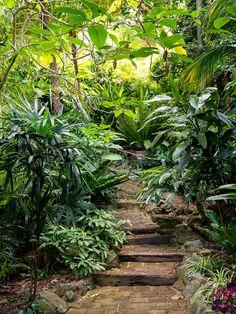 Wendy Whiteley's Secret Garden — The Design Files | Australia's most popular design blog.