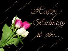 Happy Birthday to You | Happy Birthday to you