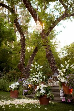 Chandelier- potted plants- lanterns- cherubs- rose petals  Hartts & Kisses Vintage Rentals - photos by The Youngrens