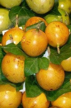 Yellow Passion Fruit, Fruit Seeds, Beautiful Flowers, Vitamins, Vitamin D
