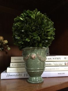 """6-7"""" Preserved Boxwood Sphere on French Anduze Pot $61."""