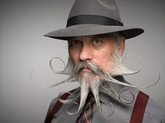 Thank you, internet, for giving me a goal in life. Simply Awefulsome. World Beard and Moustache Championships 2014