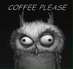 Funny owl drawing with coffee quote I Love Coffee, Coffee Art, Coffee Humor, Coffee Quotes, Funny Owls, Owl Pictures, Owl Art, Good Morning, Character Design