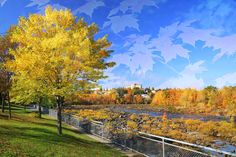 Riviere Saguenay en automne Stock Pictures, Free Stock Photos, Pixel Photo, Web Creation, Montage Photo, Photos Du, Image Photography, Belle Photo, Royalty Free Images