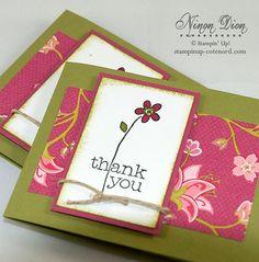 #pinkandgreen #flower #thankyou