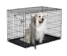 MidWest iCrate Double-Door Folding Metal Dog Crate, 48 Inches by 30 Inches by 33 Inches - http://www.thepuppy.org/midwest-icrate-double-door-folding-metal-dog-crate-48-inches-by-30-inches-by-33-inches/