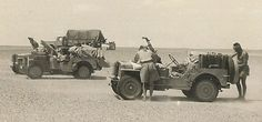 PPA Jeeps and LRDG Heavy Section truck in the Western Desert in 1943 Military Jeep, Military Vehicles, The Rat Patrol, Special Air Service, Lawrence Of Arabia, Willys Mb, British Armed Forces, Military Modelling, Jeep Models