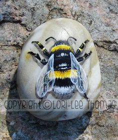 Stone Art Painting, Bee Painting, Pebble Painting, Pebble Art, Acrylic Painting Rocks, Painted Rock Animals, Painted Rocks Craft, Hand Painted Rocks, Rock Painting Patterns