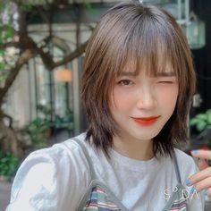 Korean Short Hair, Korean Hair Color, Short Hair With Bangs, Short Hair With Layers, Layered Hair, Short Hair Cuts, Japanese Short Hair, Short Hair Tomboy, Short Grunge Hair