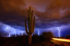 Tucson monsoon. Arizona Daily Star photographer David Sanders took this photo near Corona de Tucson. Azstarnet.com