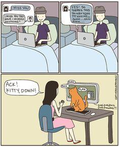 Cat ownership. - Imgur