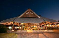 Forest wedding venue in KZN. Forest Wedding Venue, Lodge Wedding, Wedding Venues, Forest Resort, Lodges, Us Travel, Gazebo, To Go, Around The Worlds