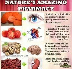They say preventing is better than curing so tap into nature's pharmacy to keep yourself healthy. Health Facts, Health And Nutrition, Health And Wellness, Health Tips, Health Benefits, Health Care, Raw For Beauty, Health And Beauty, Skinny Fiber