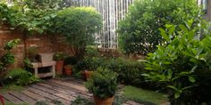 Small garden - Cozy Garden - Jardim residencial - Porto Alegre - RS - Brasil | Creare Paisagismo