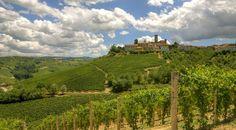 Piedmont hills tour - langhe, roero and monferrato