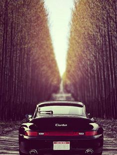 Porsche 911 - Black with Gold Rims
