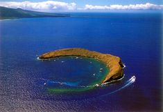Been here once to snorkel ! Molokini, Hawaii. gorgeous!