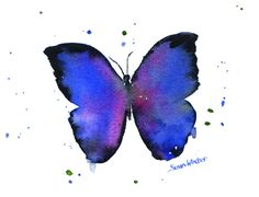 Blue Butterfly watercolor giclée reproduction. Landscape/horizontal orientation. Printed on fine art paper using archival pigment inks. This quality printing allows over 100 years of vivid color in a