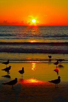 756 Nejlepsich Obrazku Z Nastenky Zapad Slunce Sunrise Beautiful