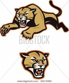 Picture or Photo of Stylized, leaping cougar or mountain lion for use as team mascot, etc. The head icon is included as a separate element.