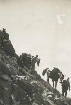 The descent from Mt. Howitt, Victorian Alps State Library of Victoria Melbourne Victoria, Victoria Australia, Old Photos, Vintage Photos, The Descent, Vintage Horse, Aboriginal Art, Vintage Travel, Alps