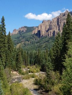 Uncompahgre National Forest, Big Cimarron near Ridgway, CO