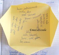 Vocabular organizat #exercitiidevocabular #sinonime #organizare #gramatica Mermaid
