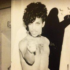 If anybody asks you, you belong to Prince. Prince Concert, Prince Images, The Artist Prince, Prince Purple Rain, Paisley Park, Handsome Prince, Roger Nelson, Prince Rogers Nelson, Purple Reign