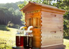 A bee hive that allows you to tap honey from the hive without disturbing the bees. Whole set can be purchased together; just add bees!