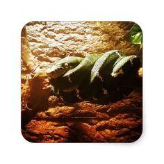 Emerald Tree Boa // Corallus caninus Square Sticker