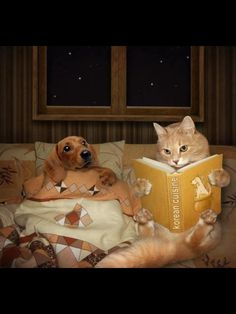 .Bedtime stories make for good company.