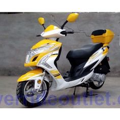 PRO Monster 300cc 250cc Scooter, Gas Scooter, Go Kart, Vespa, Scooters, Dream Cars, Honda Ruckus, Free Gas, Bike