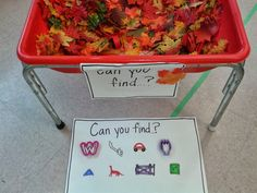 I Spy Fall Sensory Bin: Children use mini rakes to search for hidden items in the leaves