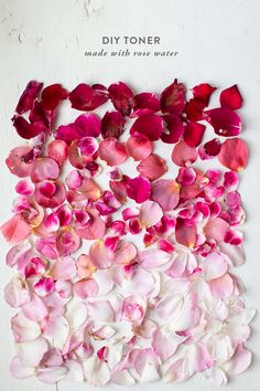DIY toner Fuerza Natural, Do It Yourself Home, Beauty Recipe, Rose Water, Rose Petals, Diy Beauty, Beauty Room, Color Inspiration, Pretty In Pink