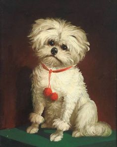 Portrait of a Little Dog      via A Portrait of Man's Best Friend - Dogs in Paintings and Art  http://amanda-severn.hubpages.com    I found this one delightfully odd