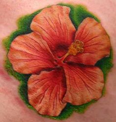Hibiscus tattoos are a common tattoo symbol found in the Pacific. Learn about hibiscus tattoos, hibiscus tattoo designs, hibiscus tattoo meanings, and ideas. Hawaiian Tattoo Meanings, Hawaiian Flower Tattoos, Hibiscus Flower Tattoos, Flower Tattoo Meanings, Hawaiian Flowers, Flower Tattoo Designs, Hibiscus Flowers, Tattoo Flowers, Floral Tattoos