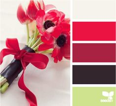 poppy currant cranberry lime green black ivory white