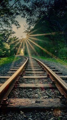 Photography Discover Sun flare on the train tracks Blur Photo Background Studio Background Images Black Background Images Picsart Background Landscape Photography Nature Photography Scenary Photography Lifestyle Photography Train Pictures Blur Background Photography, Studio Background Images, Black Background Images, Photo Background Images, Photo Backgrounds, Landscape Photography, Nature Photography, Scenary Photography, Lifestyle Photography