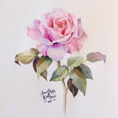 Научиться рисовать за 30 дней! Уроки рисования