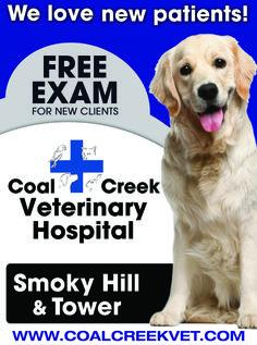 www.coalcreekvet.com