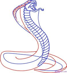 snake drawings for kids | King Cobra Coloring Pages | Backyard ...