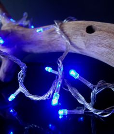 Fantado 100 Indoor/Dry Outdoor Blue LED Mini String Lights, Clear Cord, Multi-Flicker Modes by PaperLanternStore Blue Led Lights, Led String Lights, Solar Lights, Paper Lantern Store, Paper Lanterns, Home Workout Equipment, Party Lights, Holiday Lights, Fans