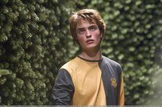 cedric diggory   Cedric Diggory