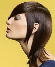 Camille Albane Long Brown Hairstyles