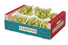 Diseño de marca y packaging marca Flamingo.