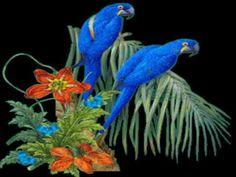 Birds of winter ---- Gheorghe Zamfir